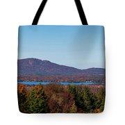 Autumn Trees At Lakeshore, Brome Lake Tote Bag