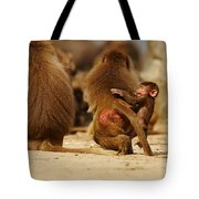Baboon Family In The Desert Tote Bag
