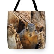 Baby Fox Squirrel Tote Bag