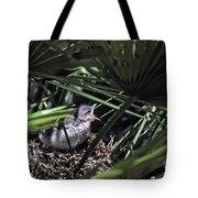 Baby Mockingbird Tote Bag