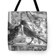 Baby Robin - Yummy Tote Bag