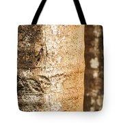 Bark Of A Tree Tote Bag