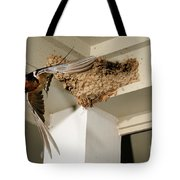 Barn Swallow Tote Bag by Scott Linstead