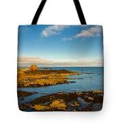Bass Rock From Dunbar Tote Bag