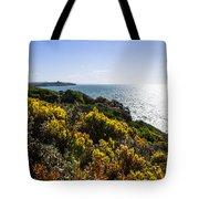 Bass Strait Ocean Landscape In Tasmania Tote Bag