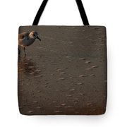 Beach Wildlife Tote Bag