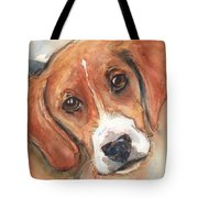 Beagle Dog  Tote Bag