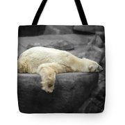 Bear On A Break Tote Bag