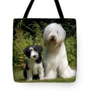 Bearded Collie And Puppy Tote Bag