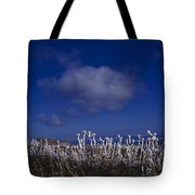Beartooth Mountain Frost Tote Bag