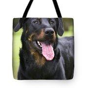 Beauceron Dog Tote Bag