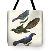 Beautiful Foreign Birds Tote Bag