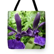 Beautiful Orchid Flower  Tote Bag