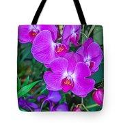 Beautiful Purple Orchid - Phalaenopsis Tote Bag