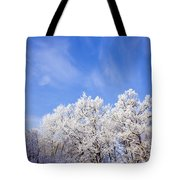Beautiful Winter Landscape Tote Bag