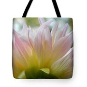Beauty From Behind  Tote Bag