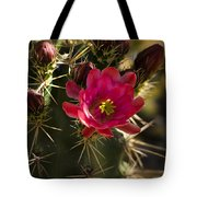 Beauty In The Desert  Tote Bag