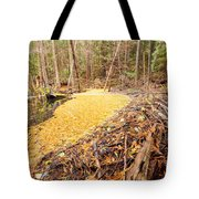 Beaver Dam In Fall Colored Forest Wetland Swamp Tote Bag