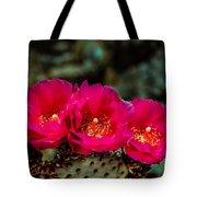Beavertail Cactus Tote Bag