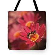 Bee On A Pink Daisy Tote Bag