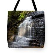 Benton Falls Tote Bag