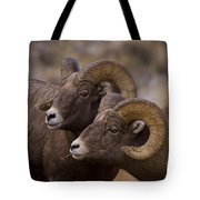 Big Horn Rams   #4664 Tote Bag