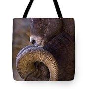 Big Horn Rams   #4732 Tote Bag