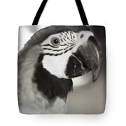Black And White Parrot Beauty Tote Bag