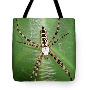 Black And Yellow Garden Spider Tote Bag