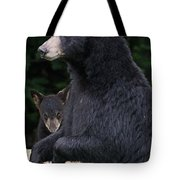 Black Bear With Cub Tote Bag