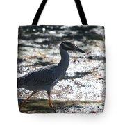 Black-crowned Night-heron Tote Bag