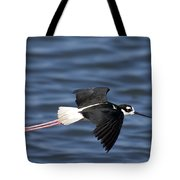 Black-necked Stilt Tote Bag