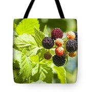 Black Raspberries 2 Tote Bag
