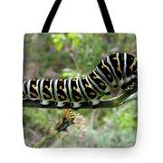 Black Swallowtail Caterpillar Tote Bag