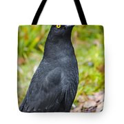 Black Tasmanian Crow Standing In Green Forest Tote Bag