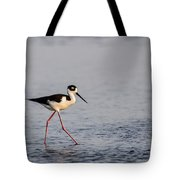 Blacknecked Stilt Tote Bag