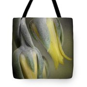 Blooming Cacti Tote Bag