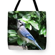Blue Jay 1 Tote Bag