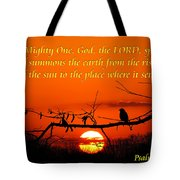 Bluebird Dawn Tote Bag