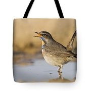 Bluethroat Luscinia Svecica Tote Bag