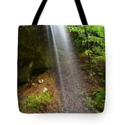 Bluff View Tote Bag