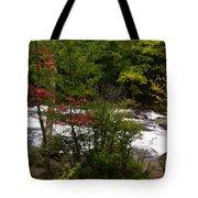 Bog River Tote Bag