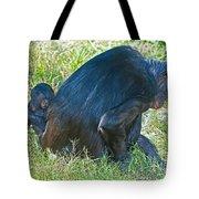 Bonobo Mother And Baby Tote Bag