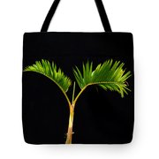 Bonsai Palm Tree Tote Bag