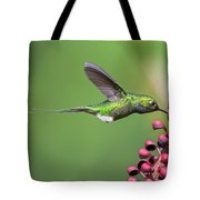 Booted Racket-tail Tote Bag