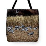 Bosque Del Apache New Mexico-sand Cranes V3 Tote Bag