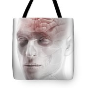 Brain And Nerves Of The Head Tote Bag