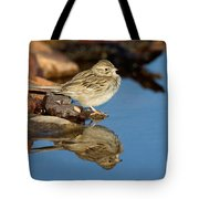 Brewers Sparrow At Waterhole Tote Bag