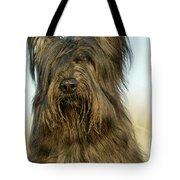 Briard Dog Tote Bag