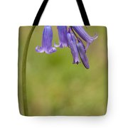 British Bluebell Hyacinthoides Non Scripta Tote Bag